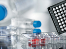 Cell Culture Media & Consumables