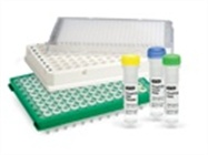 PrimePCR™ Validated Assays and Pathway Panels for Real-Time PCR