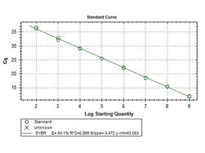 how to create standard curves rt-pcrs