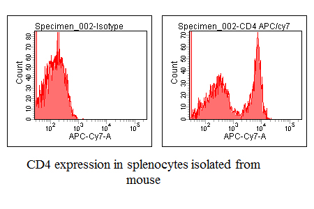Good anti-Mouse CD4 antibody