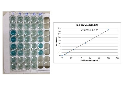 Excellent Mouse IL-6 ELISA Detection Kit