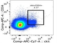 Anti-Mouse CD34 Antibody