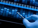 Human Whole Genome Sequencing