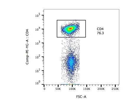 Anti-Mouse CD4 PE for Splenocyte Staining