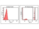 Compensation Beads for Rat Flow Cytometry Antibodies