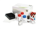 MILLIPLEX® MAP Multiplex panels for Immunology, Metabolism, CVD, Cancer, Neuroscience, Bone and Toxicity, and Other Circulating and Intracellular Biomarkers