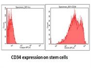 Good Anti-Human CD34 Antibody