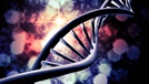 Nucleic Acid Extraction—Keeping It Stable and Intact
