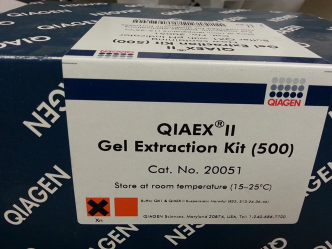 Excellent Kit For The Extraction Of DNA From Gels ...