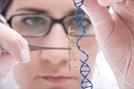 Seamless Cloning Technologies