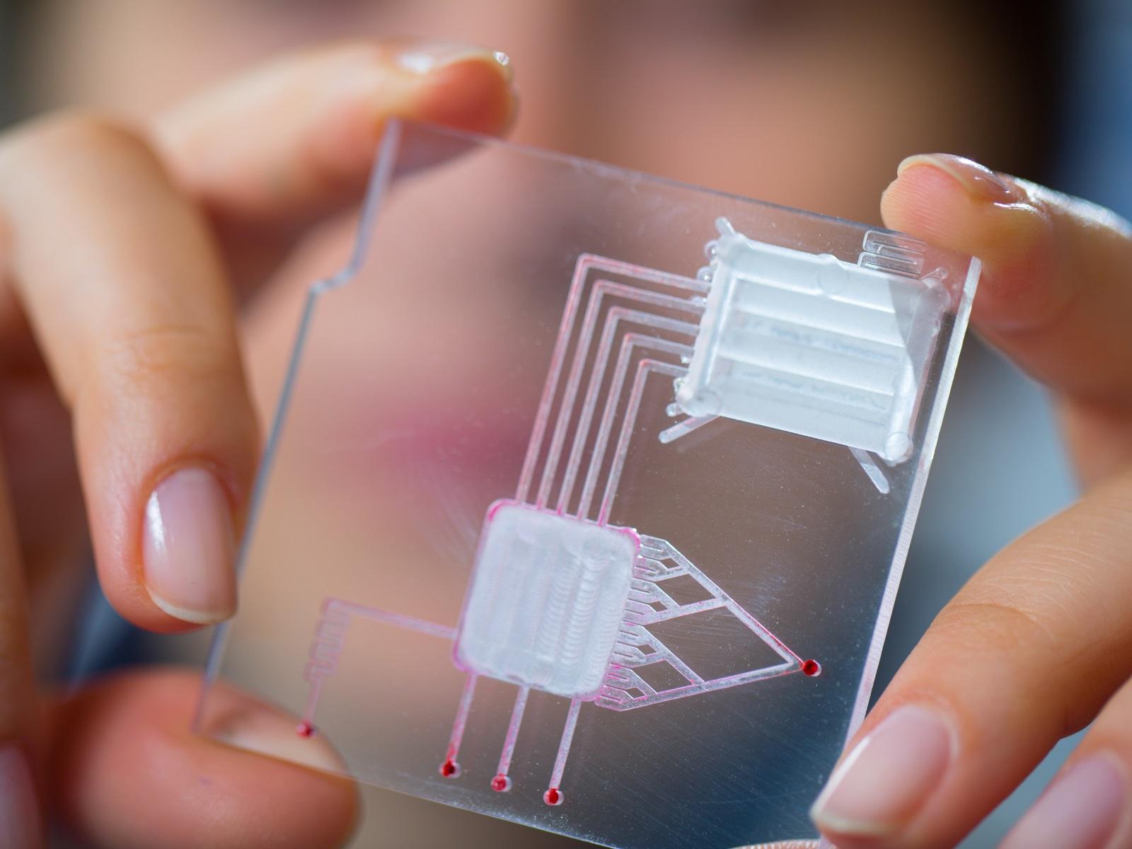 Microfluidics: Many Channels of Technological Advances   Biocompare com