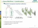 Video webinar: Development of a high-throughput method for the screening of a maize mutant collection