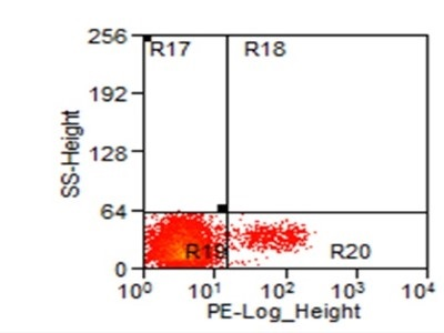 PE Anti-Human CD56 | Biocompare Antibody Review