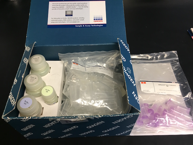 QIAGEN Kit For DNA Extraction From Agarose Gels ...