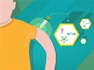 Engineering Antibodies: A FAb-ulous Future for Therapeutics