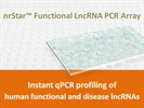 nrStar™ Human Functional LncRNA PCR Array