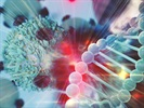 Combating Cancer with Circulating DNA