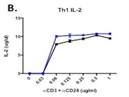 Anti-CD3 Antibody For In Vitro Stimulation Of CD4+ T Cells