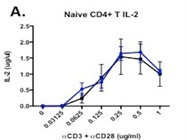 Anti-CD28 Antibody For In Vitro Costimulation Of CD4+ T Cells