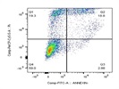 FITC Annexin V Apoptosis Detection
