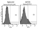 CD31 Antibody Works For Flow Cytometry