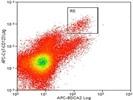 Good Antibody For Human BDCA2(CD303a) Staining