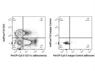 CD11c PerCP-Cy5.5 Antibody