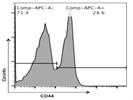 Anti-Mouse/Human CD44 Antibody