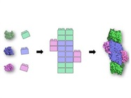 Thousands of Protein Structures Reveal Building Blocks of Oxidoreductases