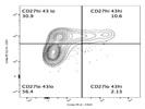 Anti Mouse CD27 Antibody