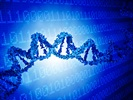 Genotyping: PCR and Microarrays Are Still Validating Results
