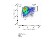 Brilliant Violet 421 Anti-Mouse CCR2 Antibody to Characterize Cardiac MFs