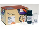 Monarch® DNA Gel Extraction Kit