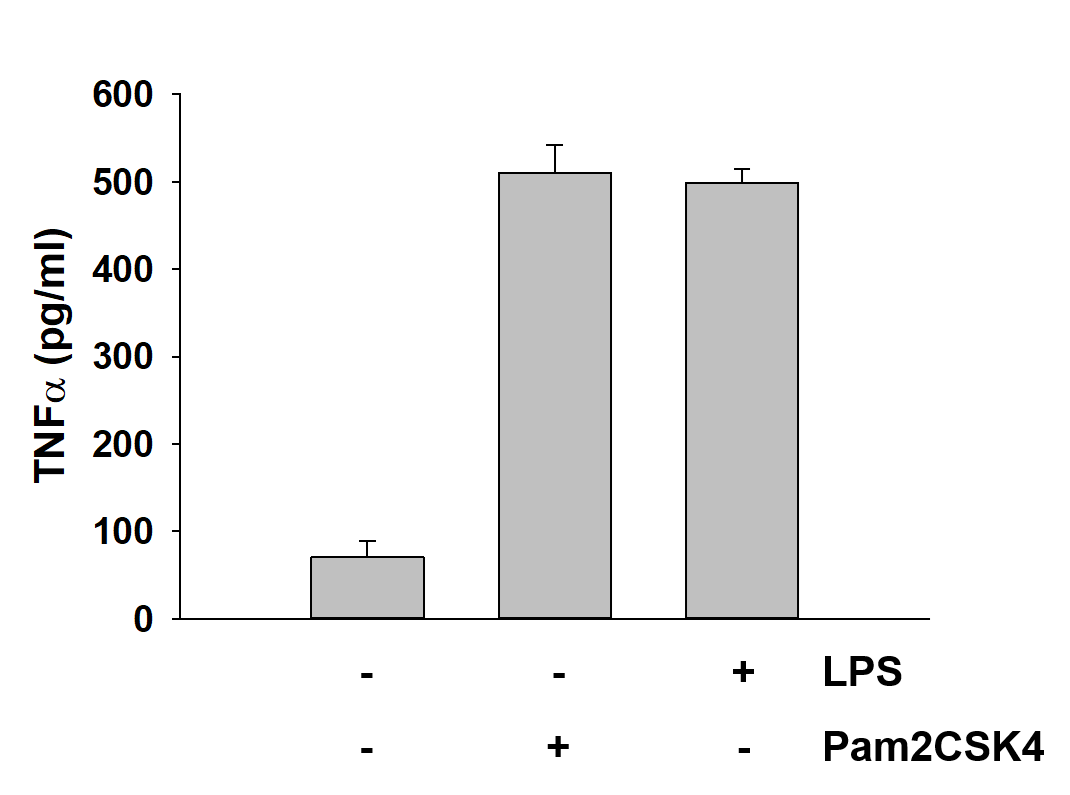 Pam2CSK4 from Tocris Induces TNFa Production and Release
