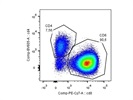 PE-Cy7 Anti-Mouse CD8a Antibody