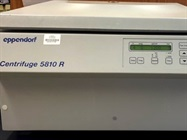Eppendorf Centrifuge 5810R is Great for Isolating Cells for Culture