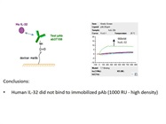 Anti-IL-32 Antibody from Abcam Does Not Bind Recombinant Human IL-32 Beta