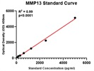 Assessing MMP13 in Cell Culture Supernatants
