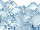 Buying and Maintaining an Ultralow Temperature Freezer