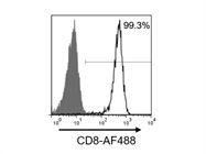 A Good Isotype Antibody for Assessing Non-Specific Antibody Binding on Peripheral CD8+ T Cells by Flow Cytometry