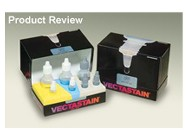 VECTASTAIN ABC Kit and VECTASTAIN Elite ABC Kit From Vector Laboratories