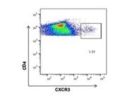 A Good APC Anti-Mouse CD183 (CXCR3) Antibody