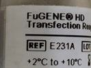Easy and Efficient Transfection Reagent
