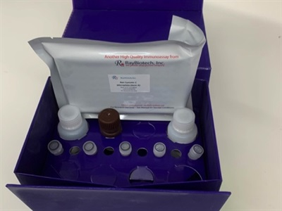 Great Price for a Great Cystatin C ELISA Kit
