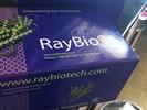 RayBiotech Has Reliable ELISA Sandwich Kits!