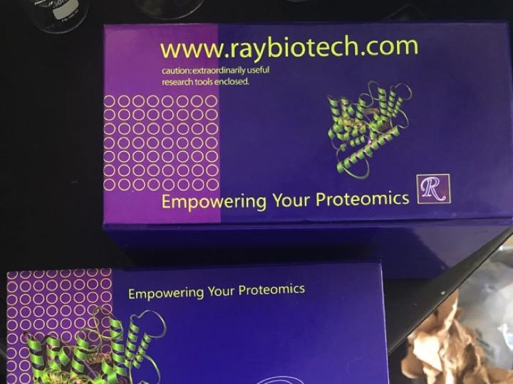A Great Raybiotech ELISA Kit for Human IGF-1