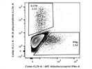 Detection of IFNG+ T Cells