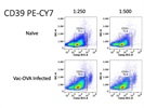 Good Antibody to Detect CD39 Expression on Cells via Flow Cytometry