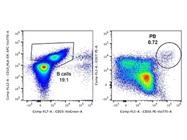 Good Option for Human CD38 Antibody