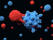Additional Immunotherapy Resources